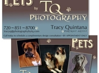 TQ Photography Pet Business Card
